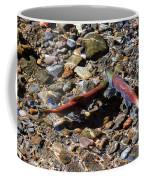 Spawning Salmon - Odell Lake Oregon Coffee Mug