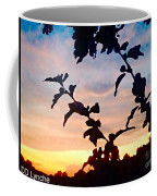 Special View Of Sunset Coffee Mug