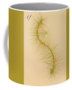 Species Number One F Coffee Mug