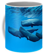 Sperm Whale Family Coffee Mug