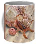 Spider Conch Shell On The Beach Coffee Mug