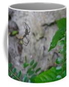 Spider In Thin Air Coffee Mug