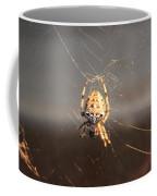 Spider In Wait Coffee Mug