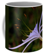 Spider Lilly Blue Coffee Mug by Susanne Van Hulst