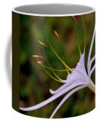 Spider Lilly Flower 2 Coffee Mug