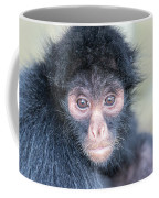 Spider Monkey Face Coffee Mug