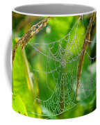 Spider Web Artwork Coffee Mug