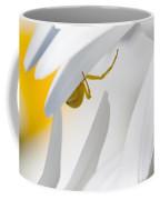 Spiderland Coffee Mug
