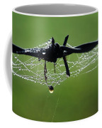 Spiderweb On Fencing Coffee Mug