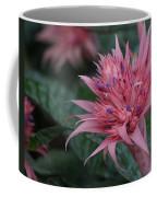 Spiky Pink Coffee Mug