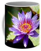 Spiky Sunshine Coffee Mug
