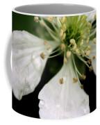 Spindly Stamen Coffee Mug