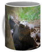 Spines Along The Back Of An Iguana In The Tropics Coffee Mug