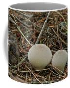 Spiny Puff Balls Coffee Mug