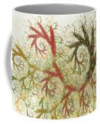 Spiral Embroidery Coffee Mug