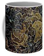 Spirals In Corals Coffee Mug