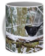 Splash. Eurasian Blackbird Coffee Mug