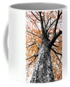 Splash Of Color Coffee Mug