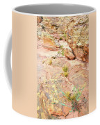 Splash Of Color In Valley Of Fire's Wash 3 Coffee Mug