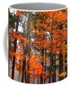 Splashes Of Autumn Coffee Mug