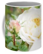 Splended Roses Coffee Mug