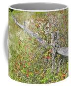 Split Rail Fence And Poison Ivy Coffee Mug