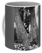 Splitting Tree Coffee Mug