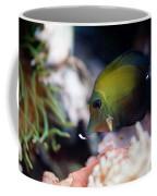 Spotted Aquarium One Fish Coffee Mug