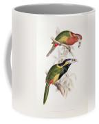 Spotted Bill Aracari Coffee Mug by Edward Lear