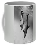 Spotted Dolphins - Bw Coffee Mug