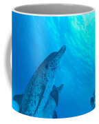 Spotted Dolphins Coffee Mug