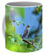 Spotted Flycatcher Muscicapa Striata .  Coffee Mug