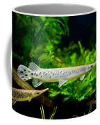 Spotted Gar Aquarium Fishes Pair Coffee Mug