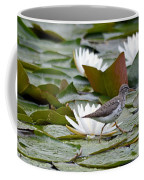 Spotted Sandpiper And Lilies Coffee Mug