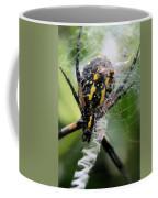 Sprawled Coffee Mug