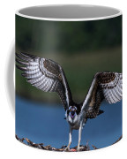 Spread Your Wings Coffee Mug by Cindy Lark Hartman