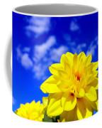Spring 2015-pic18 Coffee Mug