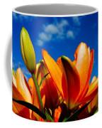 Spring 2015-pic21 Coffee Mug