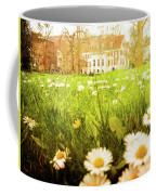 Spring. A Medow Spread With Daisies In Baden-baden, Germany Coffee Mug