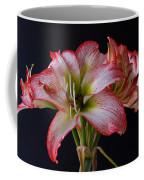Spring Amaryllis Coffee Mug
