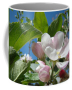 Spring Apple Blossoms Pink White Apple Trees Baslee Troutman Coffee Mug