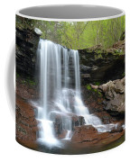 Spring At B. Reynolds Falls Coffee Mug