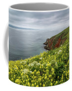 Spring At Chimney Rock Coffee Mug