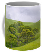 Spring At Del Valle Coffee Mug