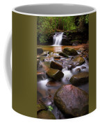 Spring At Table Rock Coffee Mug