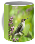 Spring Beauty Hummingbird Square Coffee Mug