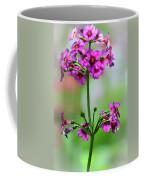 spring Beauty Coffee Mug