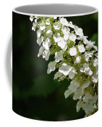 Spring Bloomers 2 Coffee Mug