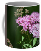Spring Bloomers  Coffee Mug