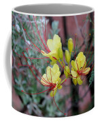 Spring Blooms Yellow Red 052814a Coffee Mug